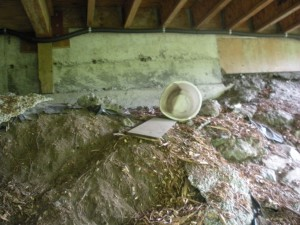 Slope erosion threatens the foundation.